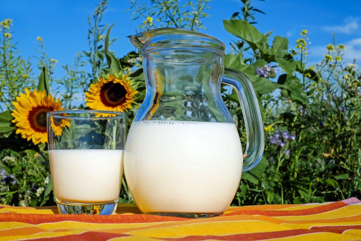 Milk Program